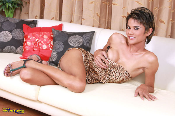 Ladyboy Nanci on Bob's Tgirls!