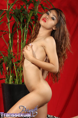 t mayb privatetranssexuals 03 Asian Ladyboy May B On Private Transsexual!