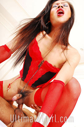 Asian Ladyboy Wi on Ultimate Tgirl!