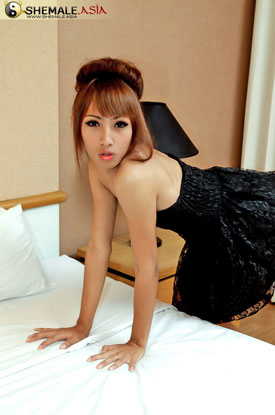 Asian Ladyboy Katoon at Shemale Asia!
