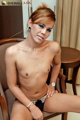 Asian Ladyboy Teena at Shemale Asia!