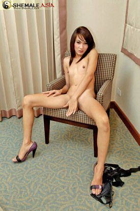 Asian Ladyboy Pak at Shemale Asia!