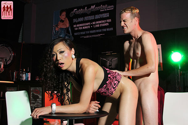 Asia Ladyboy Blog presents Venus Lux!
