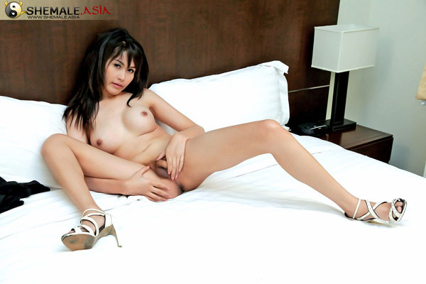 t asian ladyboy mone 02 Asian Ladyboy Mone Strips Down On Shemale Asia!