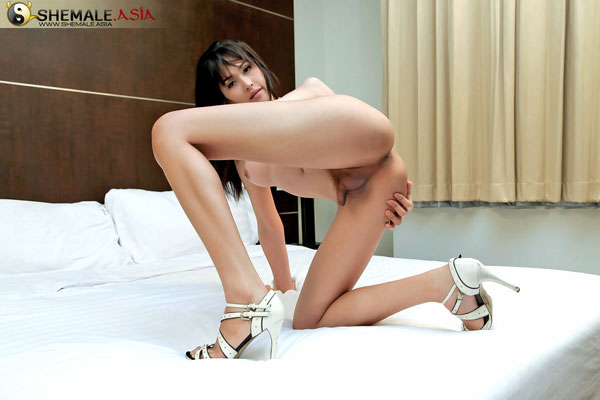 t asian ladyboy mone 03 Asian Ladyboy Mone Strips Down On Shemale Asia!
