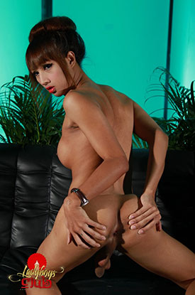 t asia ladyboy cartoon club 02 Asian Ladyboy Cartoon Strokes Her Cock On Ladyboys Club!