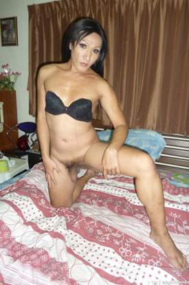 t asian ladyboy on 03 Asian Ladyboy On Poses For Pictures On Ladyboy Girlfriends!