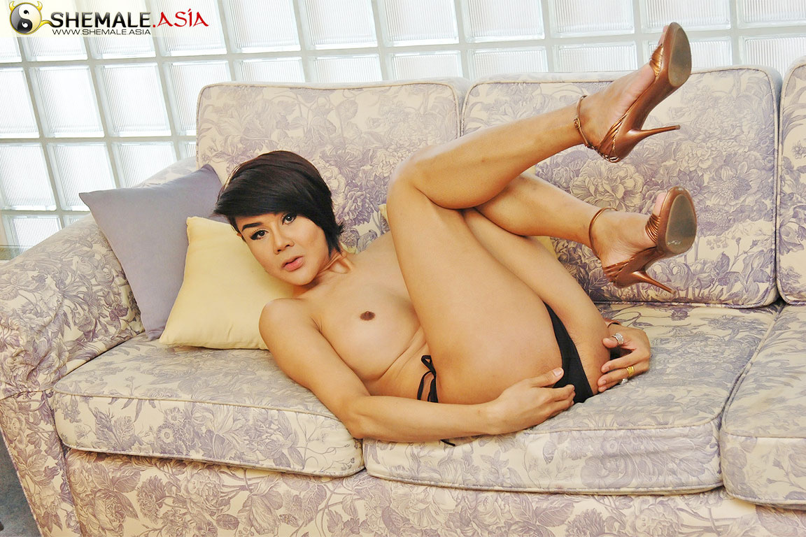 Shemale.Asia Asia Ladyboy Blog Asia Ladyboy Blog presents Lyanda on Shemale Asia
