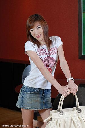 Asia Ladyboy Blog presents Ladyboy Toon!