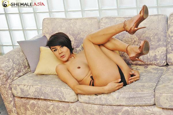 t lyanda shemale asia 02 Asian Ladyboy Lyanda Strips Down On Shemale Asia!